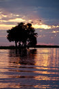 African Sunset - Botswana Stock Photos