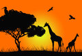 African sunset illustration with animal silhouettes Royalty Free Stock Images