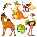 African wild animals set collection of vector cartoon isolated characters Royalty Free Stock Images