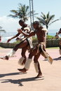 African zulu dancing Stock Images