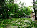Aftermath of typhoon glenda rammasun international name in the philippines photo last july Stock Photos
