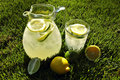 Afternoon Lemonade Royalty Free Stock Photos