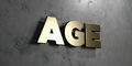 Age - Gold sign mounted on glossy marble wall  - 3D rendered royalty free stock illustration Royalty Free Stock Photo
