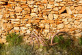 Aged bicycle rusty on stone wall Stock Image