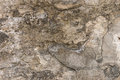 Aged cement wall texture grunge background Stock Photos