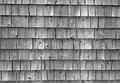 Aged house shingles great for textured background Stock Photography