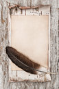Aged paper, feather and birch bark on the old wood Royalty Free Stock Photo