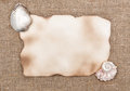 Aged paper with sea shells on sacking background texture of Stock Images