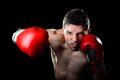 Aggressive boxer man boxing in fighting gloves throwing angry right hook punch Royalty Free Stock Photo