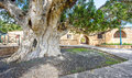 Agia Napa monastery courtyard entrance in Cyprus 2 Royalty Free Stock Photo