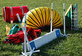 Agility Equipment Royalty Free Stock Photo