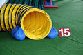 Agility tunnel equipment Royalty Free Stock Photo
