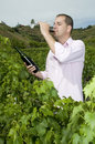 Agrarian man in vineyard tasting wine