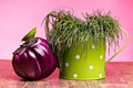 Agretti And Round Eggplant Royalty Free Stock Photography
