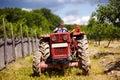 Agricoltore anziano che guida il suo trattore Immagine Stock Libera da Diritti