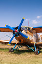 Agricultural aircraft on grass copy space Stock Images