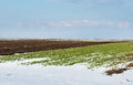 Agricultural field under snow Royalty Free Stock Images