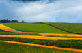 Agricultural fields on cloudy day