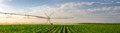 Agricultural irrigation system watering corn field sunny summer Royalty Free Stock Photo