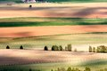 Agricultural landscape with colorful fields and forests Stock Image