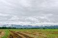 Agricultural landscape and mountains with fog after rain Royalty Free Stock Photo