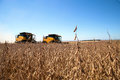 Agricultural machine harvesting soybean field. Royalty Free Stock Photo