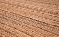 Agricultural ploughed field pattern background Royalty Free Stock Photo