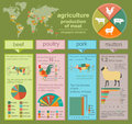 Agriculture animal husbandry infographics vector illustrations illustrationstry info graphics illustration Royalty Free Stock Image