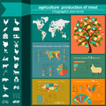 Agriculture animal husbandry infographics vector illustrations illustrationstry info graphics illustration Stock Photography