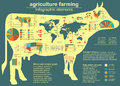 Agriculture animal husbandry infographics vector illustrations illustrationstry info graphics illustration Royalty Free Stock Photo