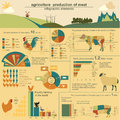 Agriculture animal husbandry infographics vector illustrations illustrationstry info graphics illustration Stock Image