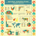 Agriculture animal husbandry infographics vector illustrationstry info graphics vector illustration Stock Image