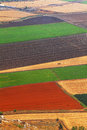 Agriculture carpet view on valley israel Royalty Free Stock Image