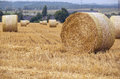 Agriculture field with hay stacks Royalty Free Stock Photo