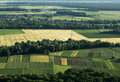 Agriculture fields from air Royalty Free Stock Photo