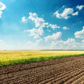 Agriculture fields and blue sky Stock Photography