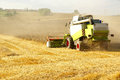 Agriculture harvester and harvesting machine on wheat field Royalty Free Stock Photos