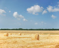 Agriculture - haystack Royalty Free Stock Image