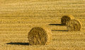 Agriculture landscape and field preparation Stock Photography