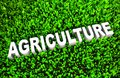 Agriculture the practice of growing produce in d Stock Photo