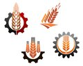 Agriculture symbols set with cereal ears and machine gears Royalty Free Stock Photos