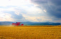 Agriculture in the usa reaping corn Royalty Free Stock Photography