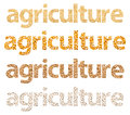 Agriculture Words Abstract Made Of Grains Royalty Free Stock Photo