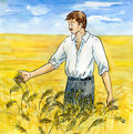 The agriculturist on a wheaten field Stock Photos
