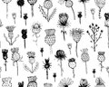 Agrimony plants seamless pattern sketch for your design vector illustration Stock Photography