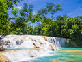 Agua Azul waterfalls in the rainforest of Chiapas, Mexico Royalty Free Stock Photo