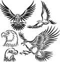 Aigle abstrait de vecteur Images libres de droits