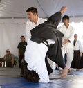Aikido Throw Royalty Free Stock Photography