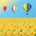 Air balloons with sunflowers Stock Photography