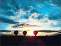 Air Balloons in yellow field during sunset. Colorful air balloons on sunset sky background.